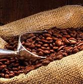 El café en el Caribe